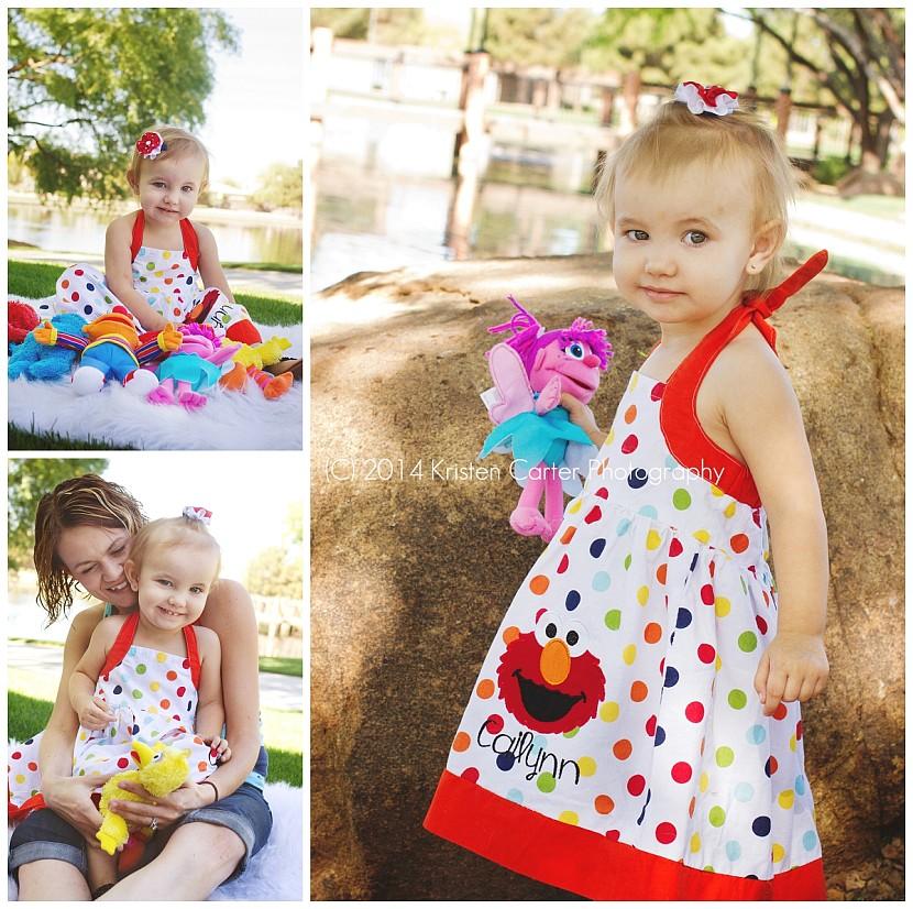 Kristen Carter Photography Gilbert AZ Sesame Street Elmo Birthday Girl_0079.jpg