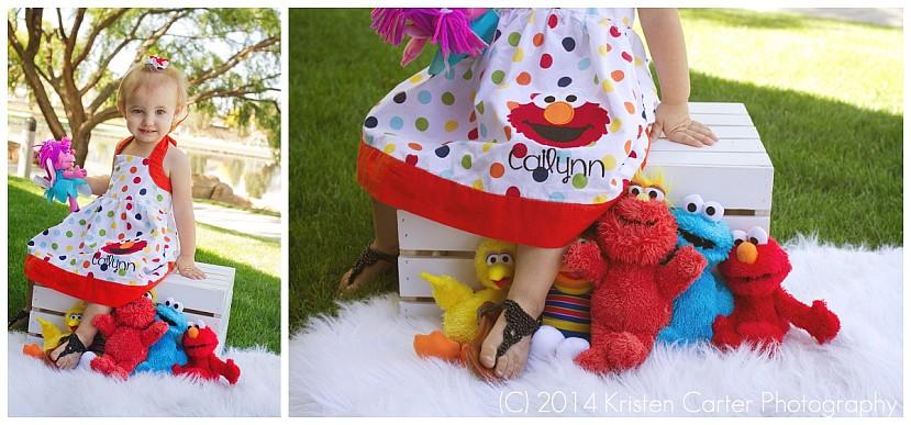 Kristen Carter Photography Gilbert AZ Sesame Street Elmo Birthday Girl_0082.jpg