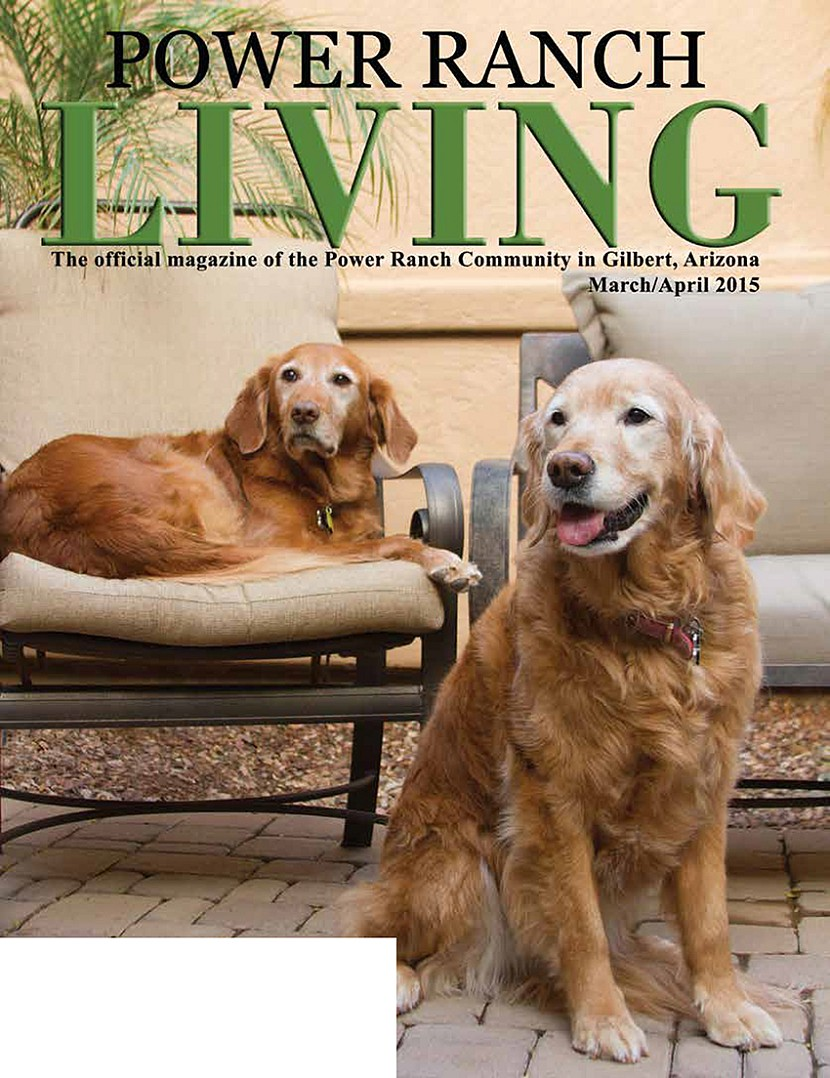 Power Ranch Living Magazine Dogs Kristen Carter Photography.jpg