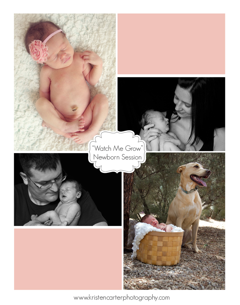Kristen Carter Photography Watch Me Grow Blog Newborn