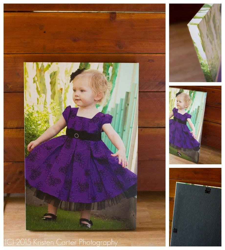 Gilbert AZ Canvas Wall Art Kristen Carter Photography
