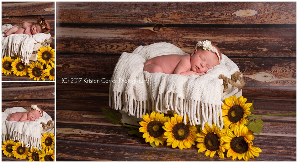Newborn in Basket Photography Safety