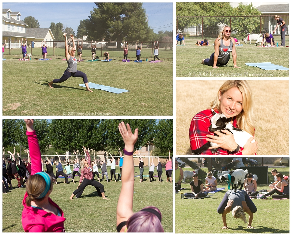 Sarah Williams Goat Yoga in Arizona